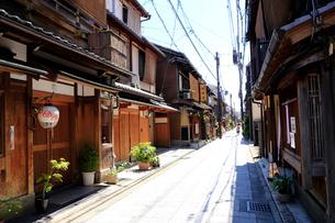 5月 宮川町 -京の花街-の写真素材 [FYI01779446]