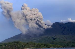 平成27年6月,道の駅「たるみず」から見た噴火する桜島の写真素材 [FYI01779447]