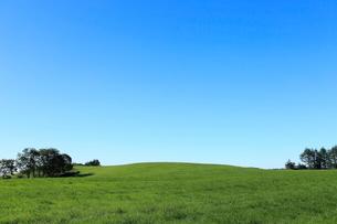 青空と緑の草原,北海道根釧台地の夏景色の写真素材 [FYI01779465]