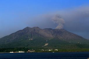 平成27年6月,鹿児島市街から見た噴火する桜島の写真素材 [FYI01779468]
