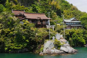5月 琵琶湖竹生島の都久夫須麻(ツクブスマ)神社の写真素材 [FYI01779474]