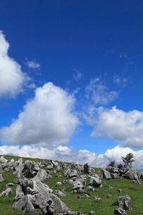 7月の四国カルスト 四国の夏景色の写真素材 [FYI01779476]
