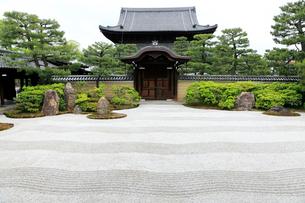 5月,新緑の建仁寺,京都の禅寺,の写真素材 [FYI01779495]