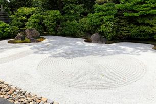 5月,新緑の建仁寺,京都の禅寺,の写真素材 [FYI01779505]