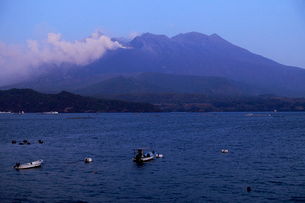 1月の朝 道の駅「たるみず」から見た噴煙を上げる桜島の写真素材 [FYI01779511]