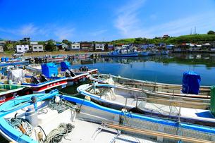 7月夏,北海道の花咲港の写真素材 [FYI01779512]
