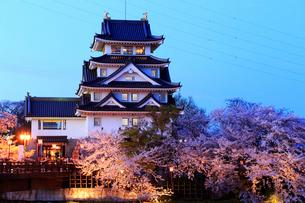 4月黄昏 桜の墨俣城-木下藤吉郎秀吉の一夜城ー の写真素材 [FYI01779513]