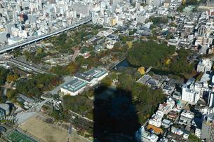 12月大阪 アベノハルカス展望台から見た天王寺動物園方面の写真素材 [FYI01779515]