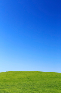 7月 北海道 根釧台地の青空と緑の草原 の写真素材 [FYI01779523]