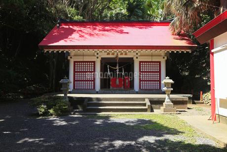 6月 初夏 鹿児島県佐多岬の御崎神社の写真素材 [FYI01779531]