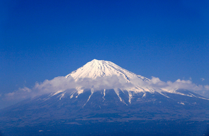 4月春 青空に映える残雪の富士山と雁公園の満開の桜の写真素材 [FYI01779554]