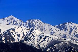 4月春 白馬村から見た残雪の北アルプスの写真素材 [FYI01779570]
