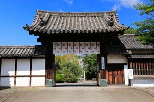 5月 春の勧修(かじゅう)寺の写真素材 [FYI01779577]