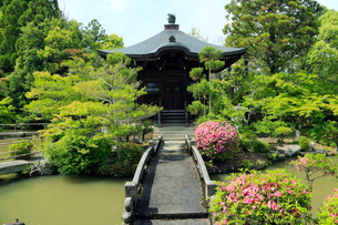 5月,新緑の清涼寺-京都嵯峨野の古刹-の写真素材 [FYI01779738]
