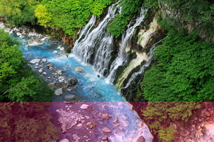 7月 白ひげの滝 -北海道の夏-の写真素材 [FYI01779775]