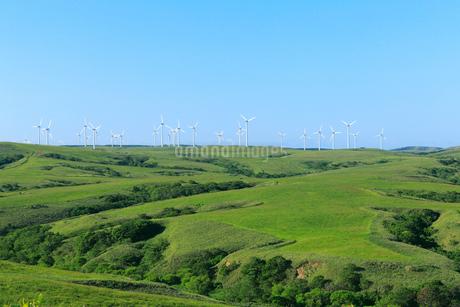 夏の宗谷丘陵風力発電と周氷河地形の写真素材 [FYI01779783]