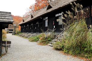 10月 鶴の湯-紅葉の乳頭温泉郷-  秋の東北の写真素材 [FYI01779788]
