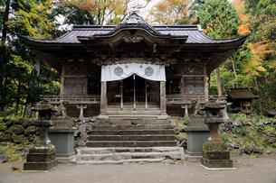 10月 十和田神社 紅葉の十和田湖 秋の東北の写真素材 [FYI01779808]