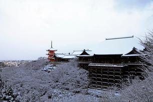 1月 清水の舞台 と三重塔-清水寺の雪景色-の写真素材 [FYI01779850]