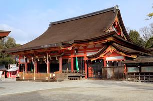 1月 冬の八坂神社の写真素材 [FYI01779851]