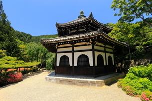 6月 サツキの善峯寺の写真素材 [FYI01779904]