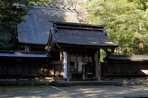 12月 若狭彦神社-若狭の一の宮-の写真素材 [FYI01779912]