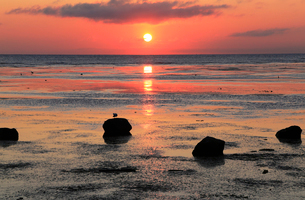 夏の宗谷海峡の夜明けー日本最北端の地ーの写真素材 [FYI01779922]