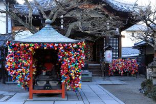 1月 冬の西向院 -京都八坂通のお堂-の写真素材 [FYI01779925]