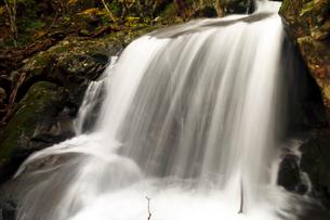 10月 せせらぎ街道の紅葉 森林公園から大倉滝への写真素材 [FYI01779939]