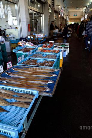11月 魚市場-冬の北陸-の写真素材 [FYI01779947]