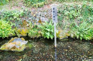 中山道醒井宿 居醒の清水と蟹石 の写真素材 [FYI01779959]