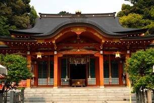 5月 長岡天満宮の拝殿の写真素材 [FYI01779972]