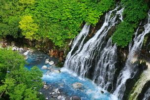 7月 白ひげの滝 -北海道の夏-の写真素材 [FYI01779976]