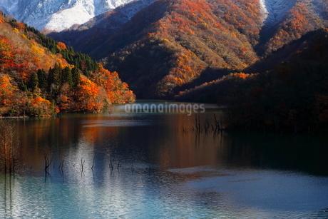 11月 紅葉と雪景色の徳山ダムの写真素材 [FYI01779993]