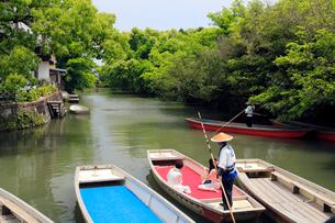 5月 緑の柳川川下りの写真素材 [FYI01779995]