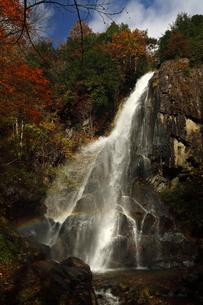 10月 紅葉の大倉滝 せせらぎ街道最大の滝の写真素材 [FYI01780001]