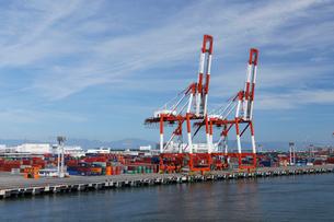 7月 名古屋港のガントリークレーンとコンテナの写真素材 [FYI01780006]