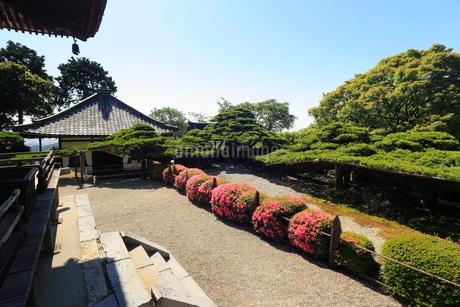 6月 サツキの善峯寺の写真素材 [FYI01780023]