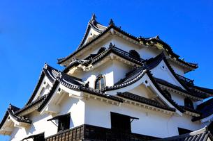 1月 青空の彦根城天守閣の写真素材 [FYI01780118]