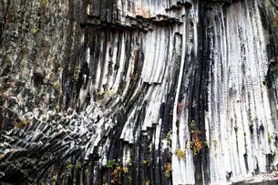12月 玄武洞の玄武岩柱状節理の写真素材 [FYI01780123]