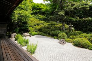 6月 サツキの金福寺の写真素材 [FYI01780196]