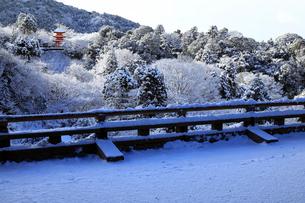 1月 清水の舞台から見た子安塔-清水寺の雪景色-の写真素材 [FYI01780223]