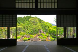5月 妙満寺の「雪の庭」の写真素材 [FYI01780278]