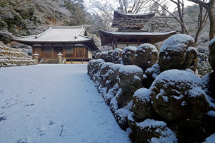 1月 雪をかぶった愛宕念仏寺の石仏  京都奥嵯峨の石仏寺の写真素材 [FYI01780290]