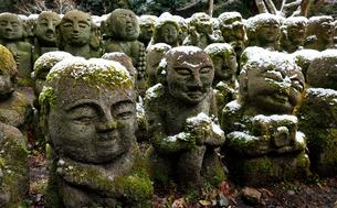 1月 雪をかぶった愛宕念仏寺の石仏  京都奥嵯峨の石仏寺の写真素材 [FYI01780293]