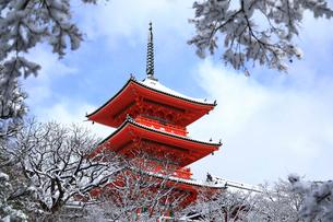 1月 雪景色の清水寺三重塔の写真素材 [FYI01780298]