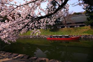 4月 桜咲く彦根城のお堀の写真素材 [FYI01780312]