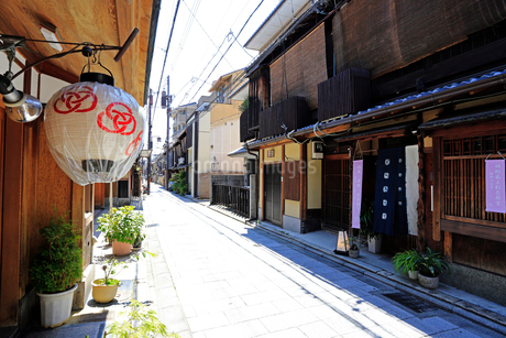 5月 宮川町 -京の花街-の写真素材 [FYI01780324]