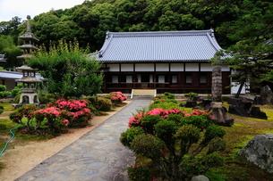 5月 新緑の興聖(こうしょう)寺  宇治の禅寺の写真素材 [FYI01780340]