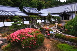 5月 新緑の興聖(こうしょう)寺 -宇治の禅寺-の写真素材 [FYI01780347]